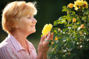 Elder Care in Memorial TX: How to Plant a Butterfly Garden with Mom