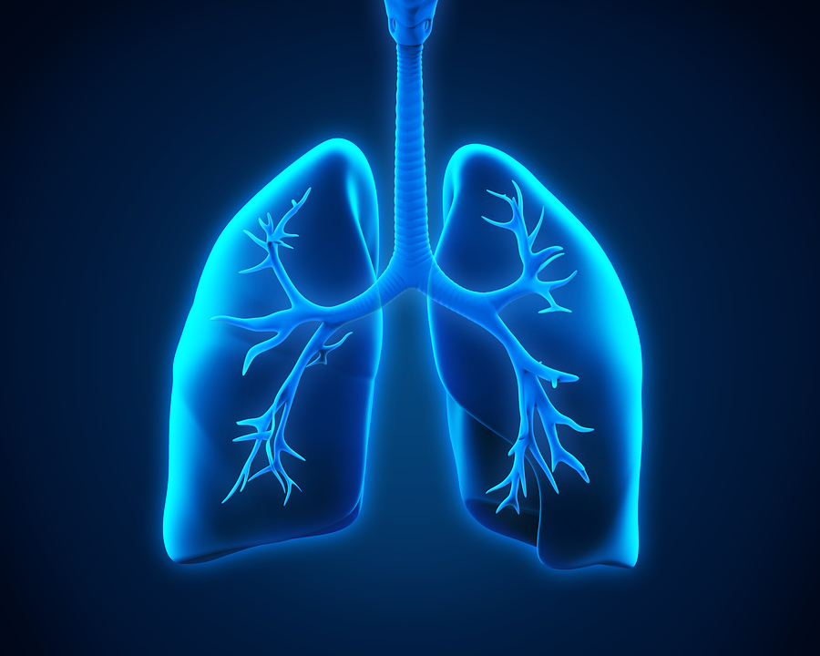Homecare in Spring Branch TX: What Respiratory Diseases are Common Among the Elderly?